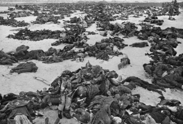 Поиск людей погибших во время войны